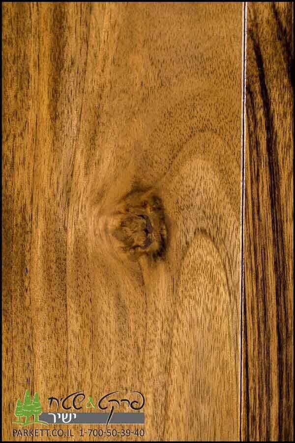 פרקטים עץ
